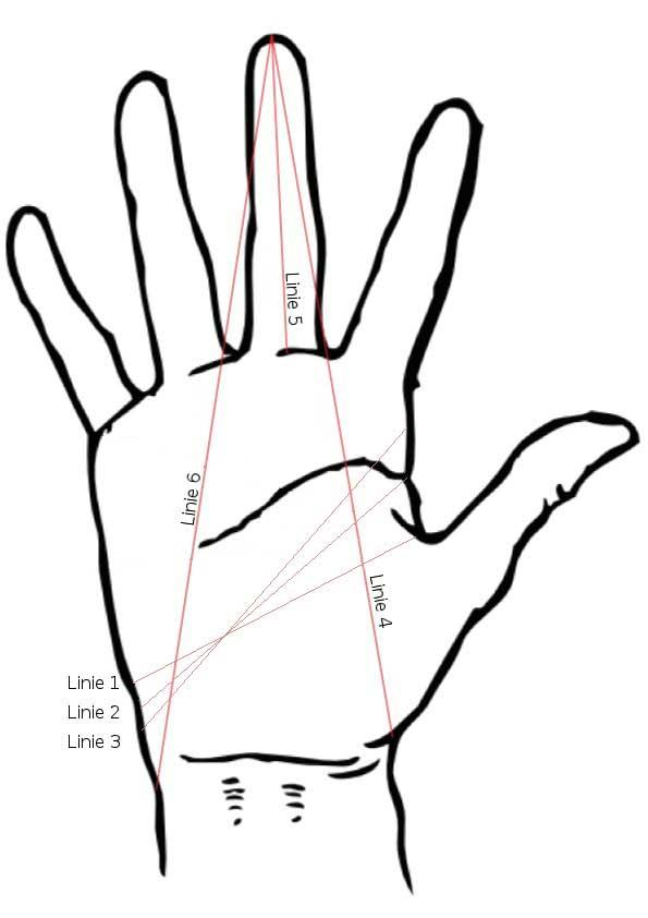 Handmaße